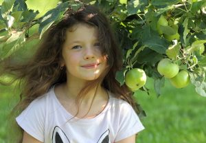 Яблоки из детства-4